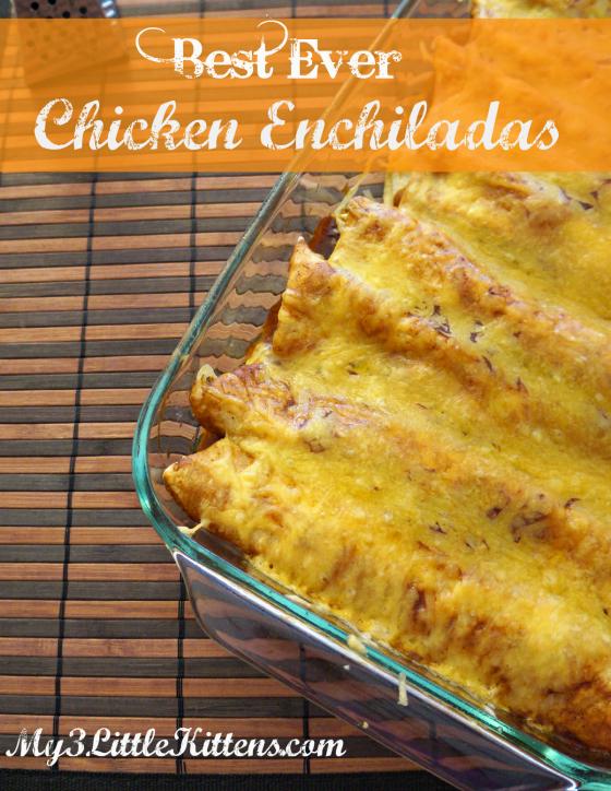 Best Ever Chicken Enchiladas - My 3 Little Kittens