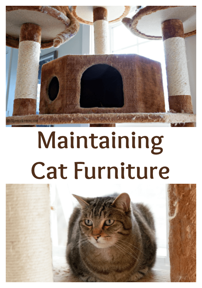 Maintaining Cat Furniture keeps your cat furniture safer. Your cat will thank you!