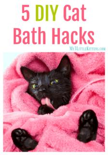 5 DIY Cat Bath Hacks