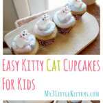Easy Kitty Cat Cupcakes For Kids