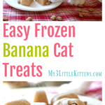 Easy Frozen Banana Cat Treats