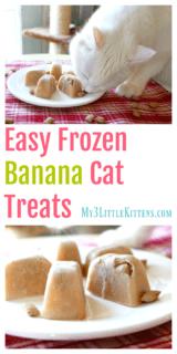 Easy Frozen Banana Cat Treats
