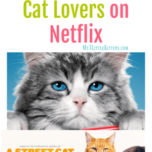 Movies for Cat Lovers on Netflix