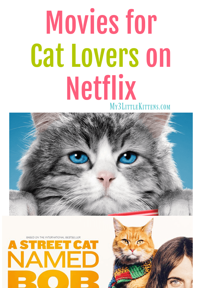 These Movies for Cat Lovers on Netflix are the perfect choice! Definitely kitty show approved!