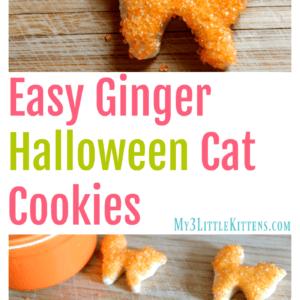 Easy Ginger Halloween Cat Cookies