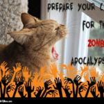 Prepare Your Cat for the Zombie Apocalypse