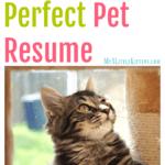 Create the Perfect Pet Resume