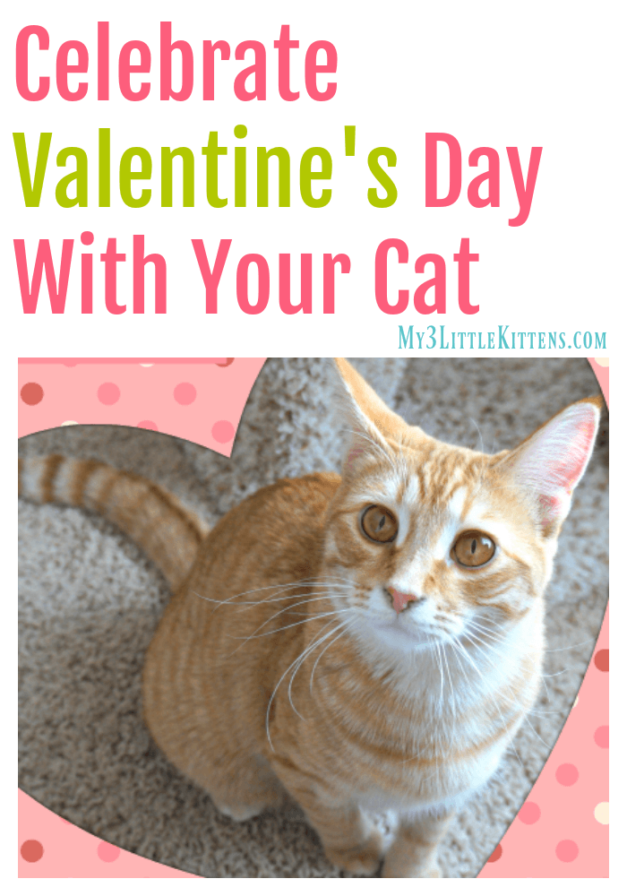 Celebrate Valentine's Day With Your Cat. Hearts and Love included!