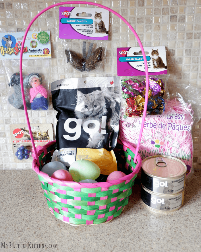 Ultimate Guide to Creating an Easter Basket for Your Cat