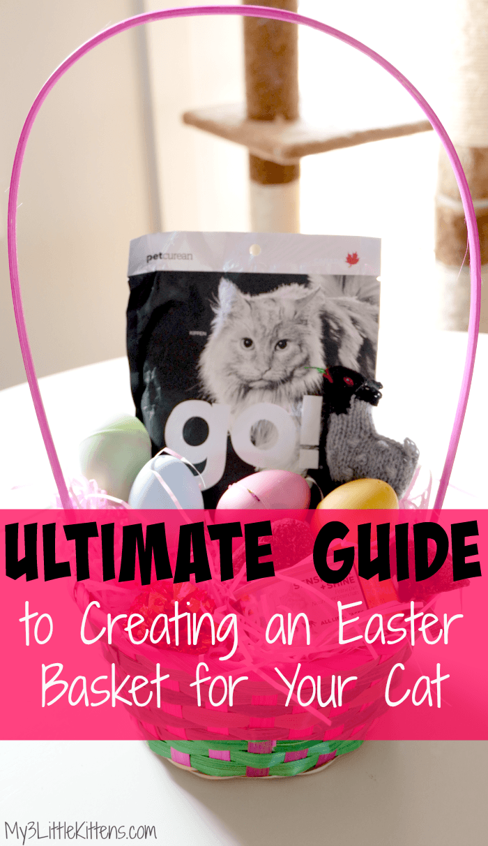 This Ultimate Guide to Creating an Easter Basket for Your Cat is the perfect holiday treat. Customize it anytime!