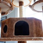 Maintaining Cat Furniture