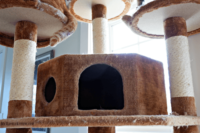 Maintaining Cat Furniture Doesn't Have to Be Struggle!