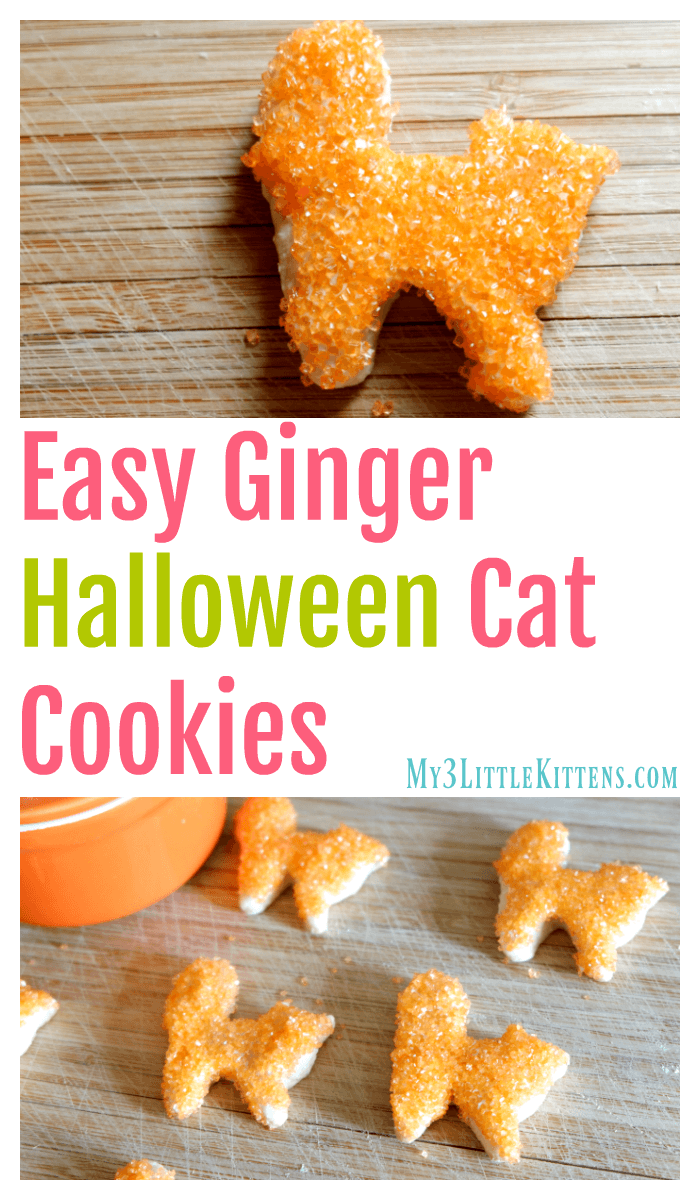 Easy Ginger Halloween Cat Cookies. Decorated for spooky kitty fun!