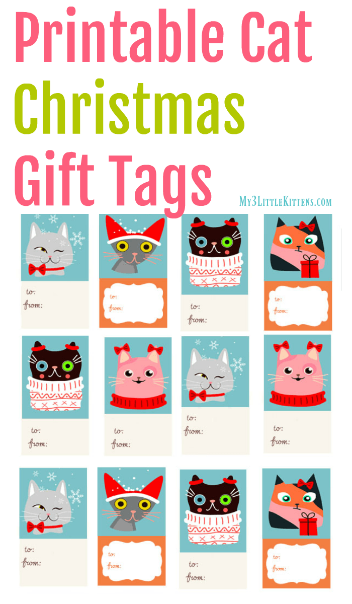 image regarding Christmas Tags Printable identified as Printable Cat Xmas Present Tags - My 3 Very little Kittens