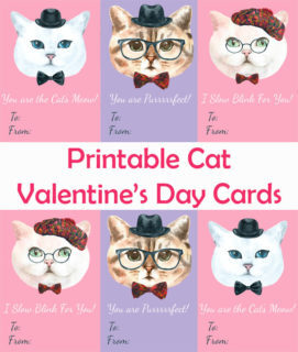 Cat Valentine's Day Cards for Kids and Cat Lovers Alike!
