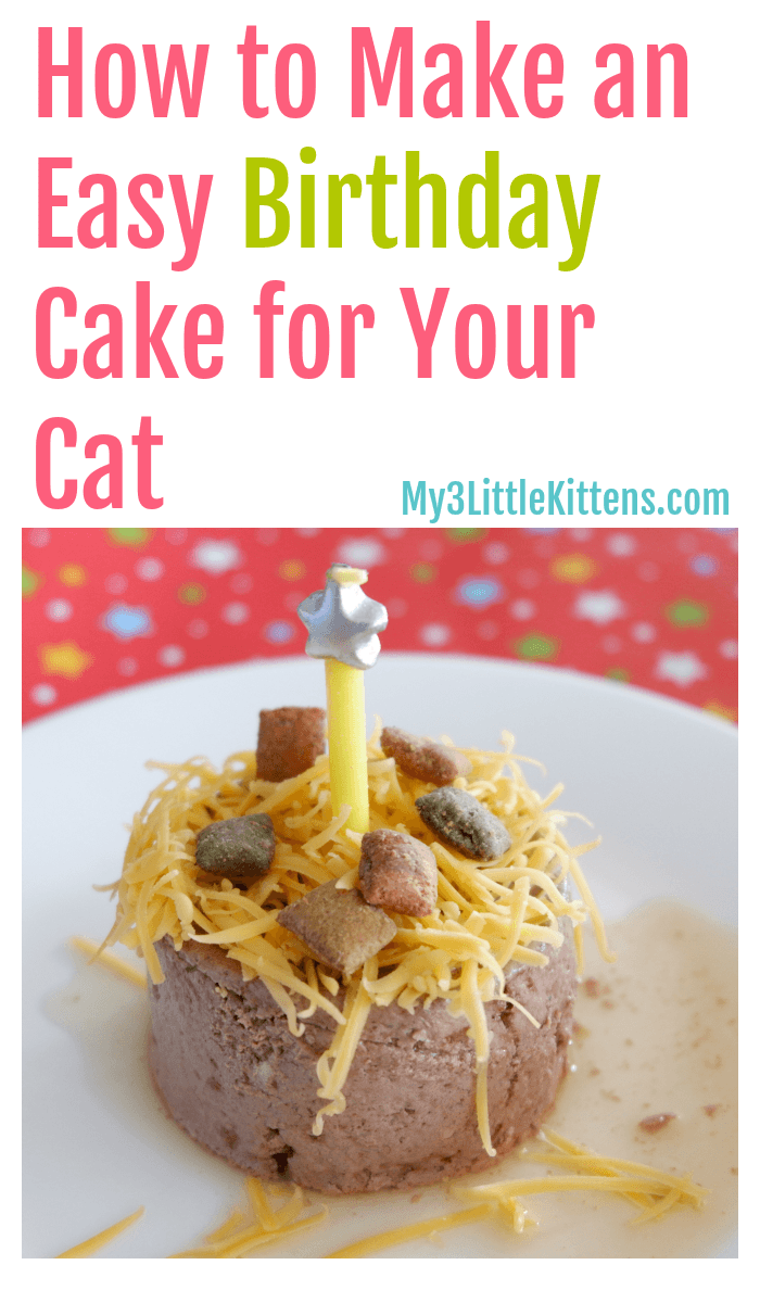 How To Make An Easy Birthday Cake For Your Cat My 3 Little Kittens